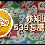 539怎麼玩