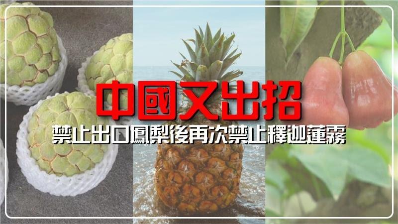 中國又出招!既鳳梨之後再禁止台灣出口釋迦、蓮霧?